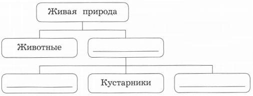 Схема Живая природа