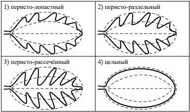 Форма листа