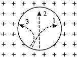 Три частицы влетели в однородное магнитное поле
