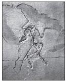 Отпечаток археоптерикса